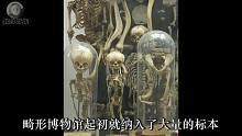 【重口慎入】揭秘全球五大诡异博物馆,去过再也不怕看鬼片