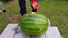 将700度滚烫的铝水倒进西瓜内,结果会发生什么?