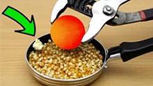 【实验】把1000度铁球扔进整盆玉米中,能否成功制出爆米花?