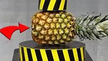 【实验】100吨液压机VS菠萝,画面超爽!
