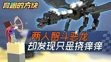 我的世界定格动画《奔跑的方块》第8集 两人智斗恶龙,却发现只是挠痒痒