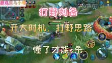 王者荣耀:刘备的打野思路,开大时机,懂了的才能4杀,5杀!