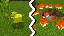 我的世界:你有见过会爆炸的鸭子么?