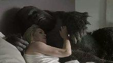 女子趁男子不在家,带回一只精壮猩猩,一时没忍住!