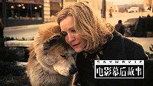 49狗年看狗片,解读感人催泪片《忠犬八公的故事》