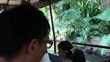 旅游:香港迪斯尼乐园探险