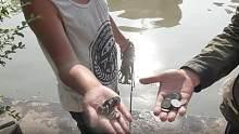 两小伙用强磁到十几个池塘打捞,半天的时间捞到了30多个硬币,可把小伙开心坏了