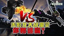 我的世界:末影龙大战凋灵!你赌谁赢?