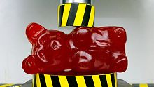 世界上最令人满意的视频:压榨测验橡皮糖熊
