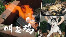 入江闪闪: 院子厨房之泥包「荷香叫花鸡」,老闪挥汗掘地吃鸡,狗哥在一旁馋哭了