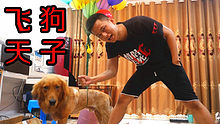 把一大罐氦气用来吹气球!最后我可以把我家的狗子带上天吗?