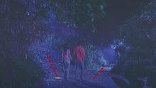 小情侣在林中迷路,已故前女友突然出现指路,信还是不信……