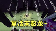 我的世界:尝试用末影水晶复活末影龙,那场面太帅了