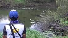 钓鱼视频:遇上一条比较生猛的鱼,大力抽竿都没有飞出水面!