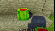 制作一个带勺子的西瓜
