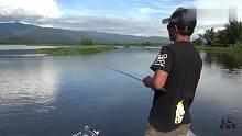 渔乐生活家钓鱼:路亚大师,软竿细线钓起大鱼,还没出水就知道鱼有多重!