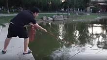 用强磁到大运河森林公园打捞一下,看看小伙捞到了什么