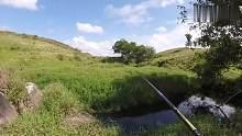 渔乐生活家:看见水就两眼发光,哪怕是个小水坑,也想伸竿试试