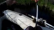 渔乐生活家:蚯蚓串成小团团,再洒点小药,大板鲫连杆上钩