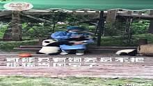 有才的网友:蚩尤骑着熊猫打仗一定是用来卖萌迷惑敌人的!