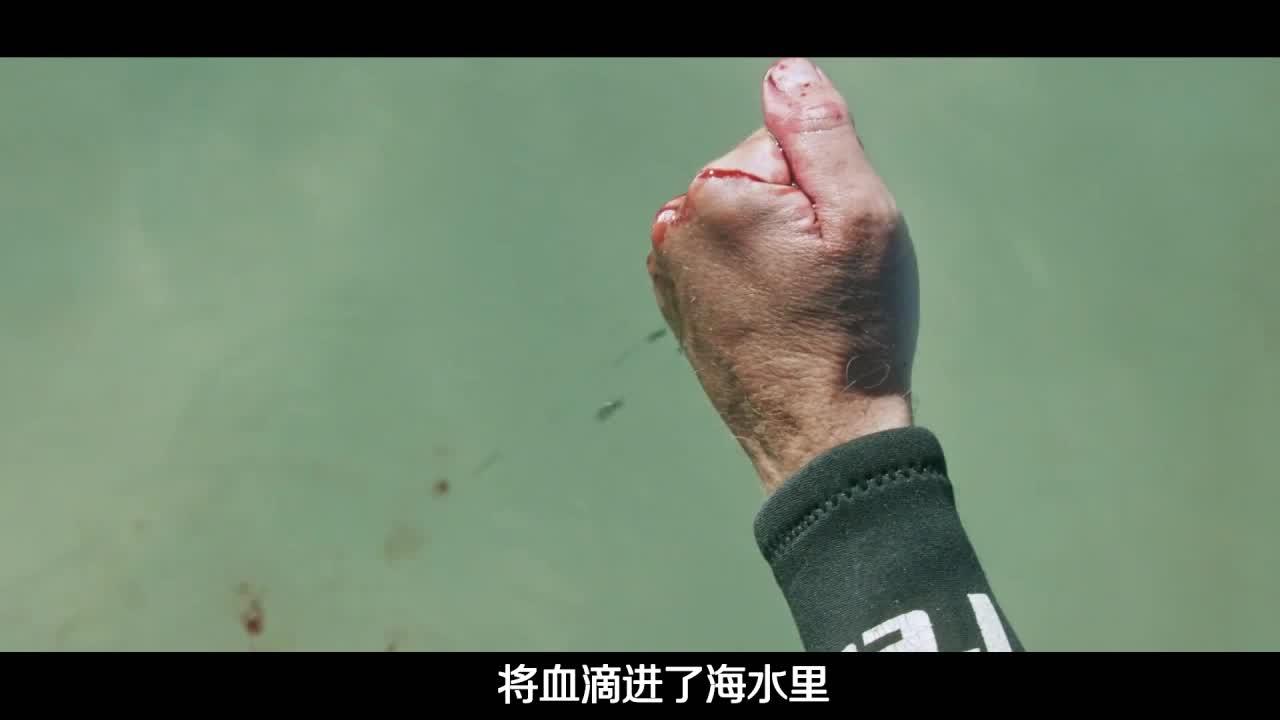 Big笑工坊-唐唐说电影:你们要的《六头鲨》,唐唐捂着心脏吐完了