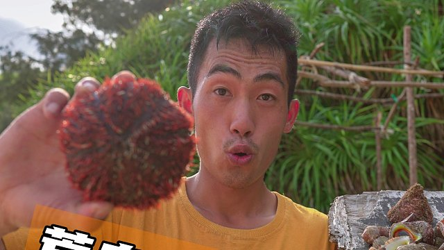 荒岛生存第六集,收货一顿海螺海胆大餐